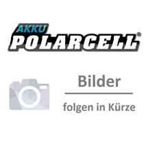 PolarCell Li-Ion Akku für Panasonic X700