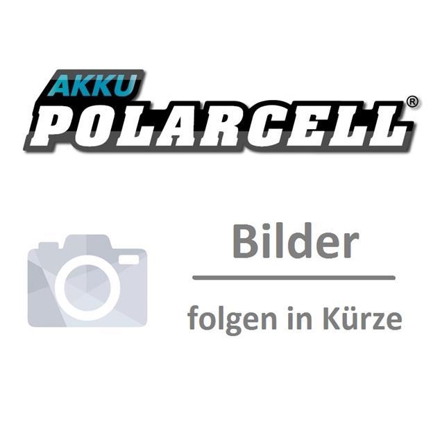 PolarCell Li-Ion Akku für Panasonic SA6